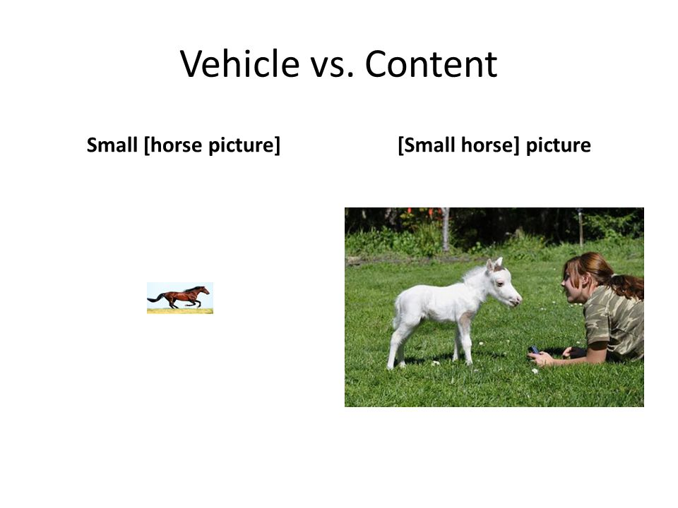 Vehicle vs. Content Small [horse picture] [Small horse] picture